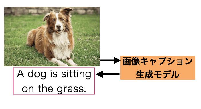 画像キャプション生成(Image Captioning)