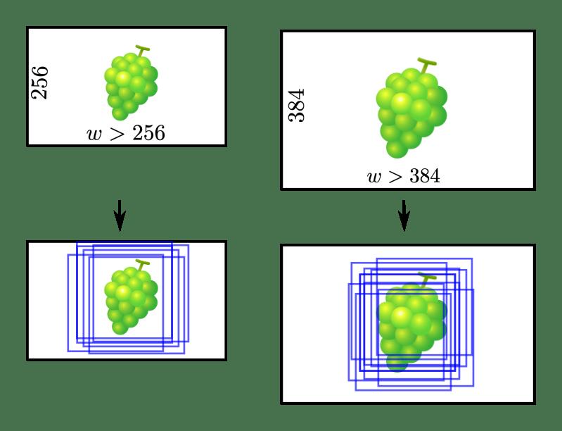 複数スケールのデータ拡張 (VGGNet)